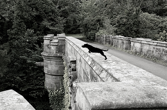 Overtoun bridge aka dog suicide bridge