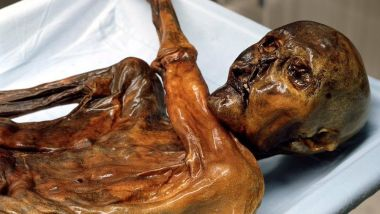 Ötzi – The cursed mummy of a Tyrolean Iceman from Hauslabjoch 15