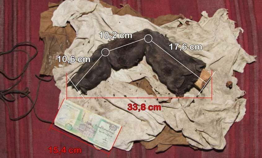 O dedo gigante egípcio mumificado