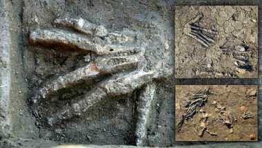 Bàn tay khổng lồ