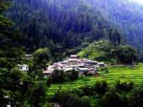 barot-village