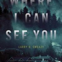 MysteryPeople Review: WHERE I CAN SEE YOU by Larry D. Sweazy