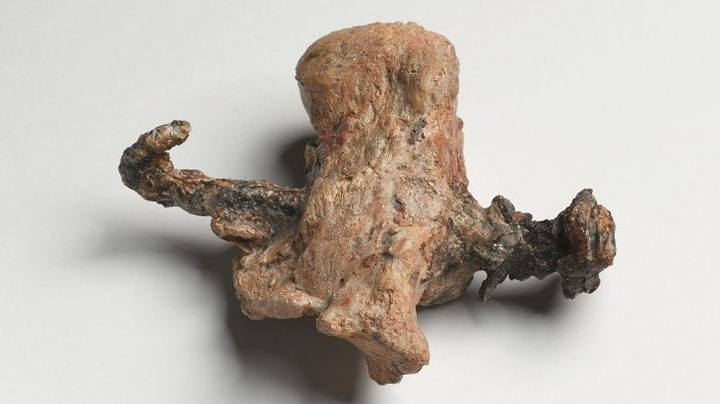 Hasta el reciente hallazgo, este talón con un clavo atravesado era la primera y única prueba de una crucifixión.