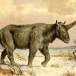 Los unicornios existieron, pero el cambio climático los extinguió
