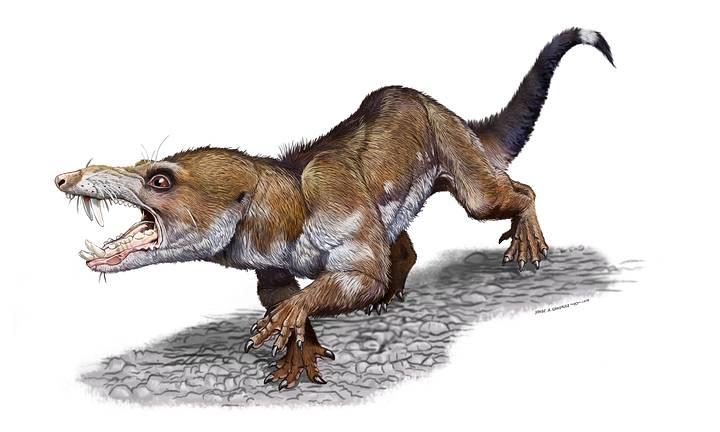 Pseudotherium argentinus'.