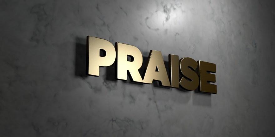 Praise - grungy wooden headline on Maple wall - 3D rendered stock image