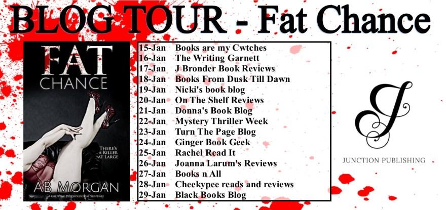 blog tour banner - fat chance