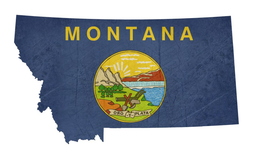 Grunge state of Montana flag map
