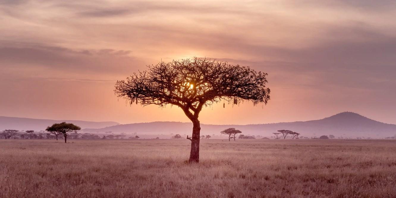 Spiritual Africa