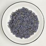 Herb Lavender