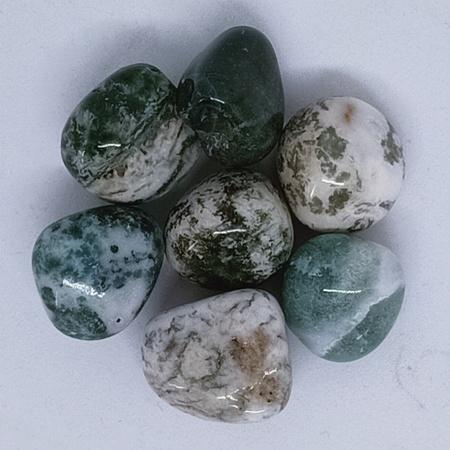 Tree Agate Tumbled Crystal