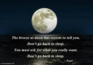 Rumi sleep moon