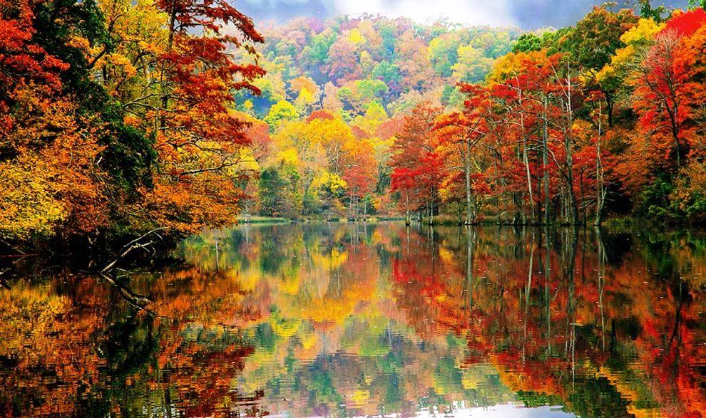 Αποτέλεσμα εικόνας για foto autumn