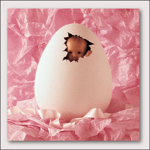anne_geddes_preview_2-1