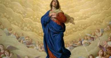 Our Lady of Medjugorje Tells Visionaries She Was Assumed into Heaven