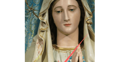 "The Word ""Mir""  Appears on Statue of Mary… ""Mir"" means ""Peace"" in Croation"
