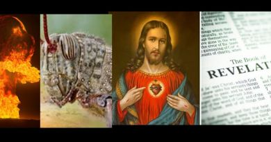 """Seven Trumpets Sounding""  Locust plague fears: Final Book of Revelation -apocalypse seal 'broken' after swarm reaches China"