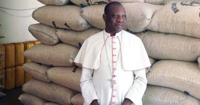 Nigerian Bishop Sees Jesus in vision.   Jesus hands bishop a sword that turns into Rosary