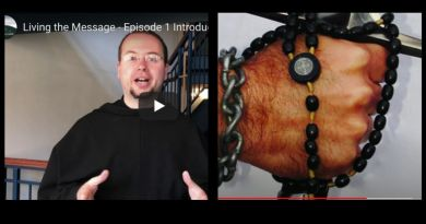 "Bishop sees Jesus in vision. Jesus hands him sword that turns into Rosary…   Our Lady asks us to pray from the heart, but what does this mean?  Medjugorje insights –  ""Living The Messages""  Daniel Klimek narrates Episode 2…Powerful"