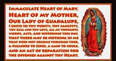 OUR LADY OF GUADALUPE – The Woman of Color who will save the world.  Her hidden message for today's troubled land.