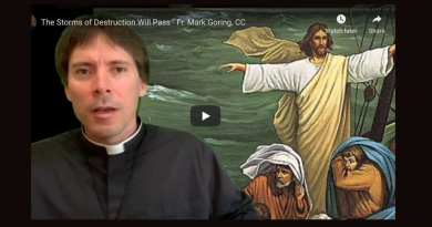 All of Humanity is Contaminated – Fr. Mark Goring, CC – Powerful