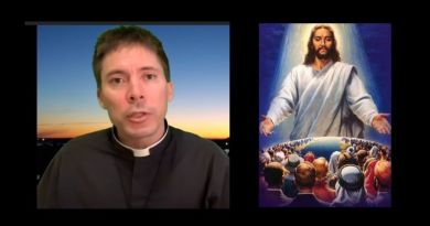 "Fr. Goring, priest with with huge social media following, says: ""2020 will be the year for the Illumination of Conscience WAKE UP!"" – Apostacy Darkening the West…Powerful video"