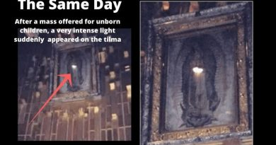 "Miracle!  – Womb of Virgin Mary Suddenly Glows During Mass in the Basilica of Our Lady of Guadalupe…""Absolutely amazing. Thank you God!"""