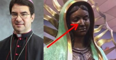 "Miracle Mystery:  ""We Have Not Discerned Natural Causes"": Bishop Issues Incredible Report on Weeping Statue ""I remind you that the Church believes in the existence of fallen angels, who at times try to trick us."""
