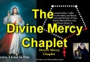Divine Mercy Movement to Save America – How to Bring the Divine Mercy Prayer in to Your Daily Routine