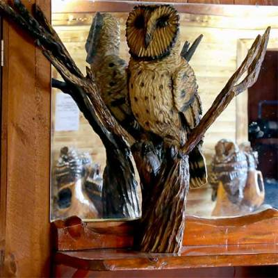 Owl Carvings