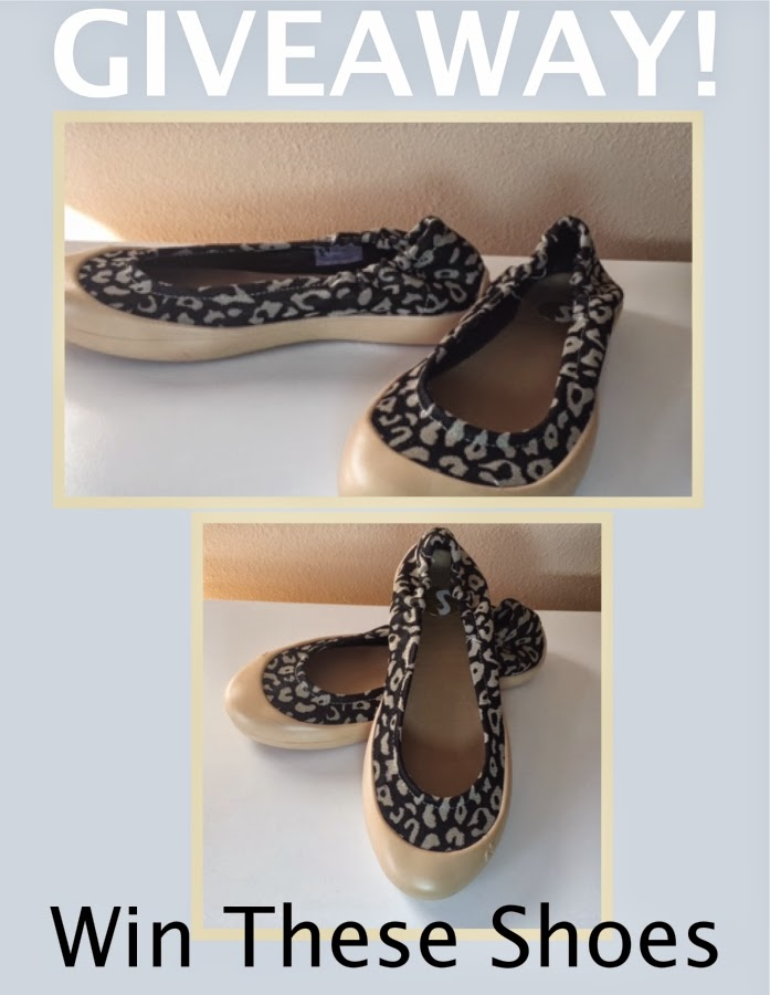 giveaway: win leopard print ballet shoes for women ' title=