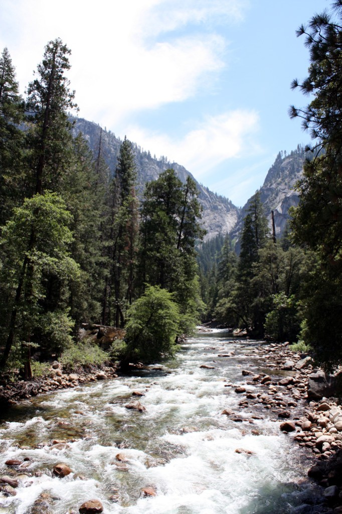 Five Perfect Reasons to Call Yosemite Home