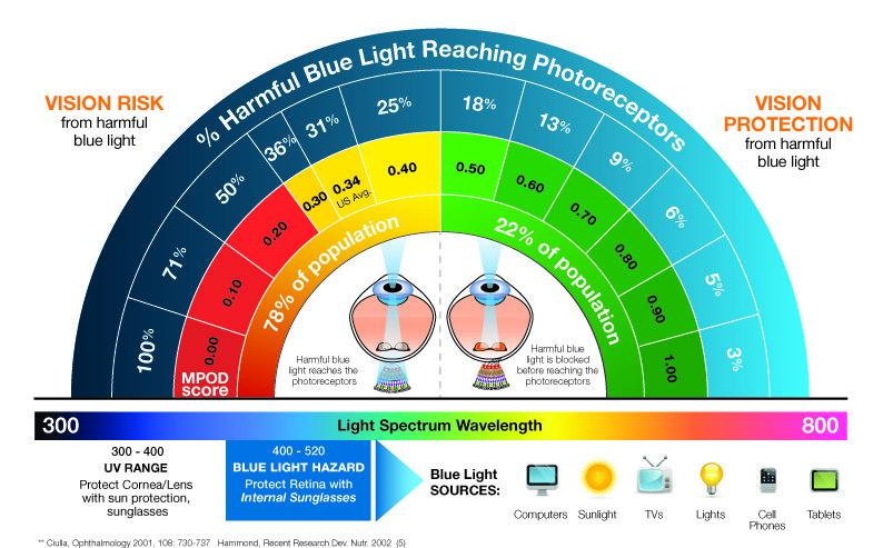 The Harmful Effects of Blue Light Emissions & How to Protect Your Eyes from It: Propek Eyewear from the Spektrum Glasses