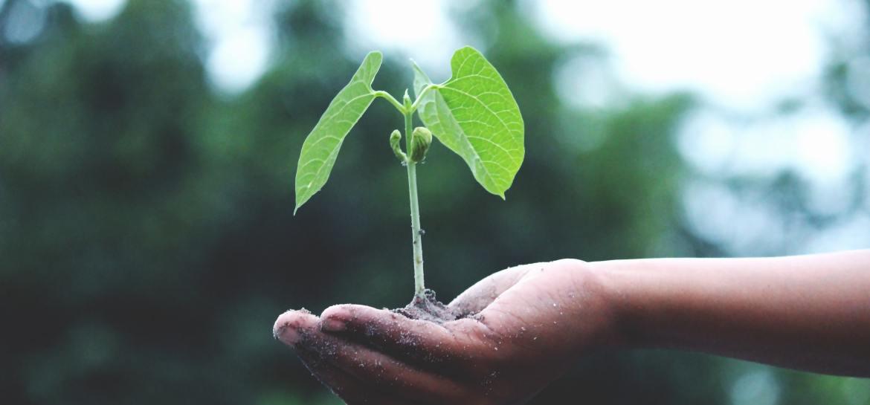 croissance spirituelle première partie by my sunny posts