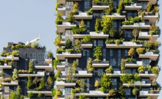 2-china-vertical-forest-c