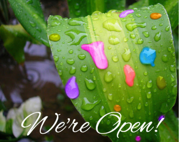 Rain, Rain Go Away...We're Open!