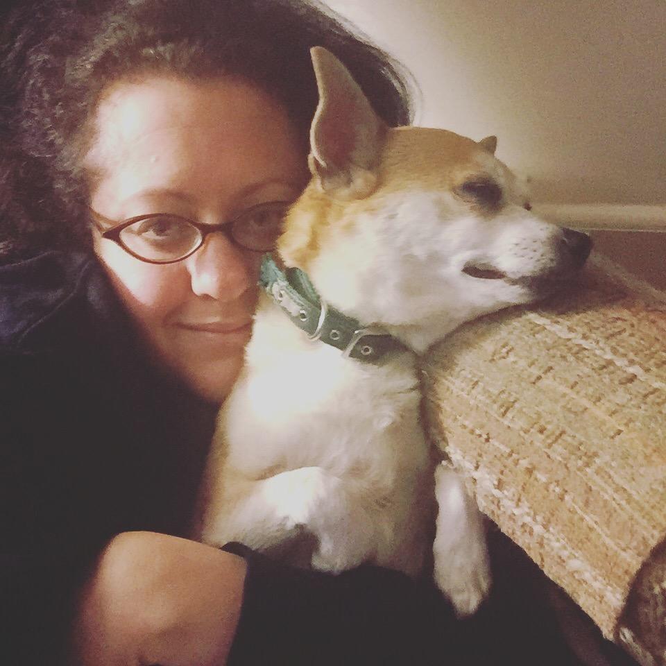 cancer sucks, canine cancer, canine lymphoma