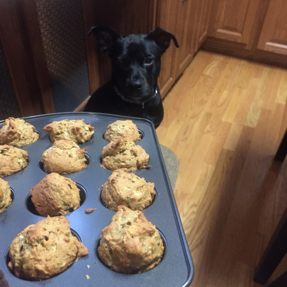 Homemade dog treats banana apple cupcakes michelle maskaly