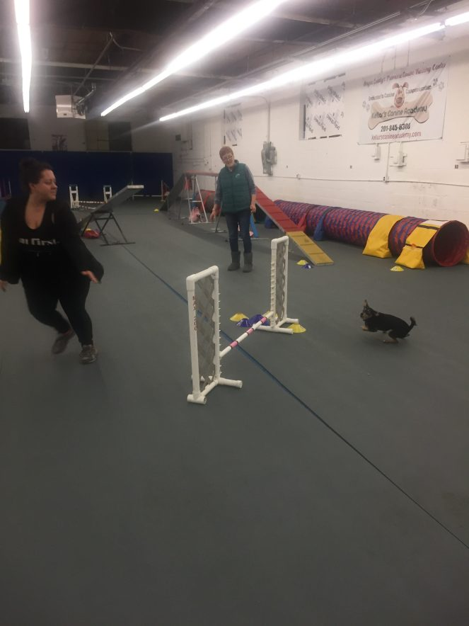 Michelle  maskaly and Maddux agility training
