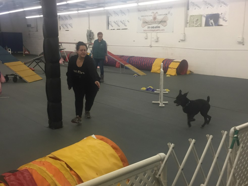 Michelle Maskaly Agility training with bear