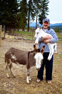 Baby Donkey 9577 FB WM