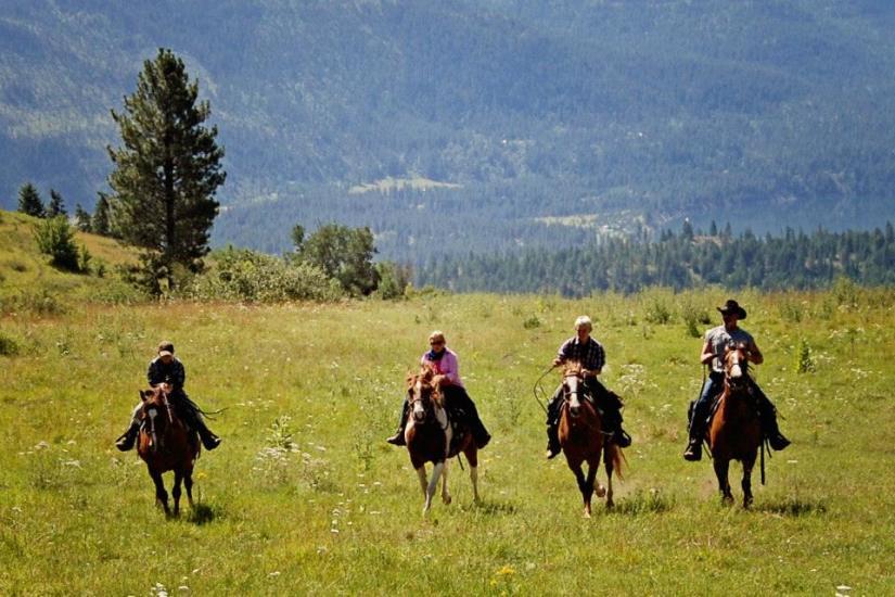 Tareski horses