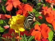 Florida Apr 2012 120