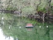 Florida Feb 2012 098