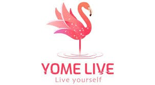 Live video chat, live streaming