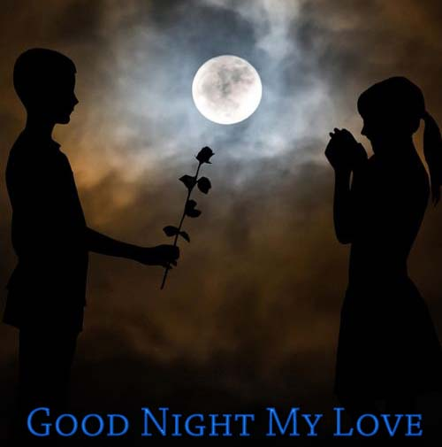 Romantic Good Night Wishes for SMS