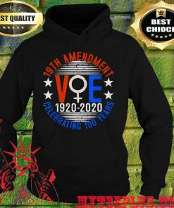 19th amendment vote 1920 2020 celebrating 100 years hoodie