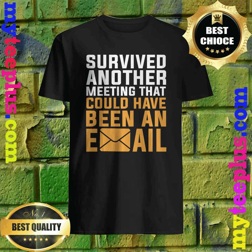 I Survived another meeting that should have been an email T-Shirt