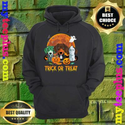 Trick or Treat Dachshund Halloween Gift For Dog Lover hoodie