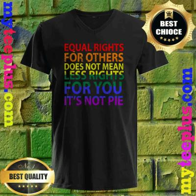 Equal rights for others does not mean less right for you v neck